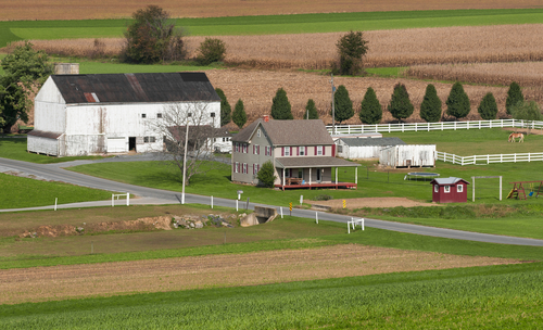 Farm in Chalfont, PA